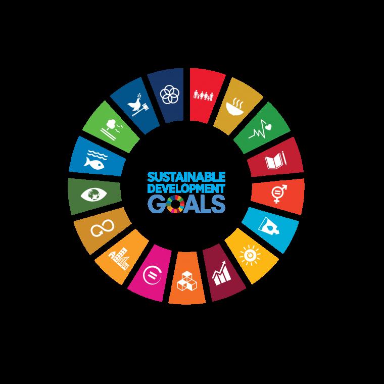SDG-logo